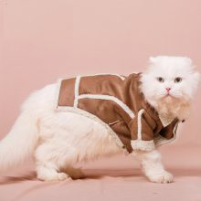 Warm Lambswool Jacket for Cat
